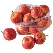 Fresh Organic Gala Apples