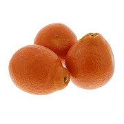 Fresh Organic Minneola Tangelos