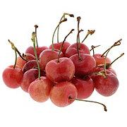 Fresh Organic Rainier Cherries