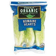 Fresh Organic Romaine Heart Lettuce