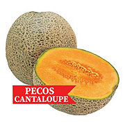 Fresh Pecos Cantaloupe