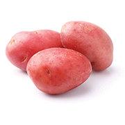 Fresh Red Seed Potatoes
