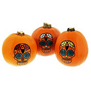 Fresh Small Sugar Skull Painted Pumpkins