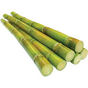 Fresh Stalk Sugar Cane