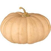 Fresh Sweet Hazel Baking Pumpkin