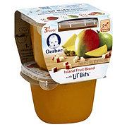 Gerber 3RD Food Lil Bits Island Fruit Blend