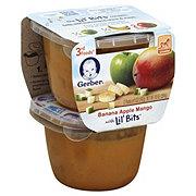 Gerber 3rd Foods Banana Apple Mango with Lil Bits 2 pk