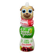 Good 2 Grow Fruit Punch 100% Juice Assorted Characters