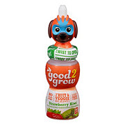 Good 2 Grow Strawberry Kiwi V-Blend Juice with Assorted Characters