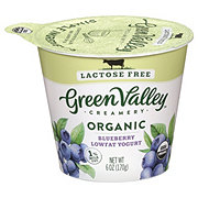 Green Valley Creamery Organic Low Fat Lactose Free Blueberry Yogurt