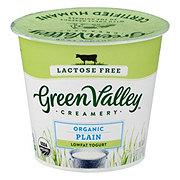 Green Valley Creamery Organic Low Fat Lactose Free Plain Yogurt