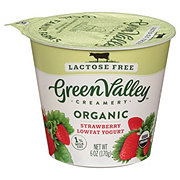 Green Valley Creamery Organic Low Fat Lactose Free Strawberry Yogurt