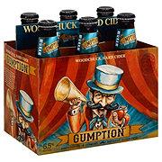 Gumption Original Cider 12 oz Bottles