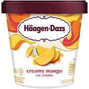 Haagen-Dazs Destination Series Mango Ice Cream