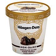 Haagen-Dazs Non-DairyChocolate Salted Fudge Truffle Frozen Dessert