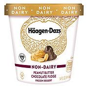 Haagen-Dazs Non-DairyPeanut Butter Chocolate Fudge Frozen Dessert