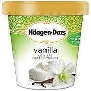 Haagen-Dazs Vanilla Low Fat Frozen Yogurt