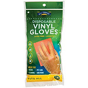 Hill Country Fare Disposable Vinyl Gloves