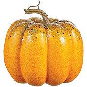 Holiday Market Assorted Pumpkins