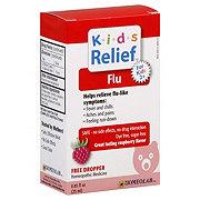 Homeolab USA Kids Relief Flu For Kids 2+ Raspberry Flavor