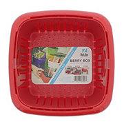 Hutzler Berry Box, Assorted Colors