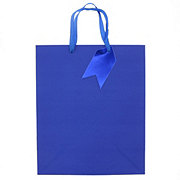 IG Design Group Large Blue Gift Bag