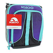 Igloo Purple and Blue Vertical Lunch Kit