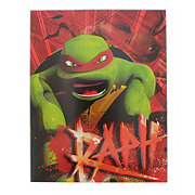 Innovative Designs Teenage Mutant Ninja Turtles Portfolio, Characters & Designs May Vary