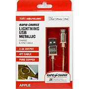 itek Gold Metallic Lightning Cable