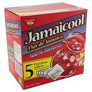 Jamaicool Hibiscus Gallon Tea Bag