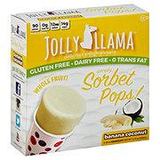 Jolly Llama Banana Coconut Sorbet Pops