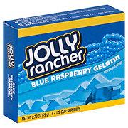 Jolly Rancher Blue Raspberry Gelatin Mix