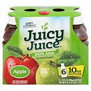 Juicy Juice 100% Apple Juice 10 oz Bottles