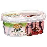 Kemps Frozen Yogurt Shop Raspberry & Chocolate