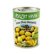 Kvuzat Yavne Green Olive Manzanillo