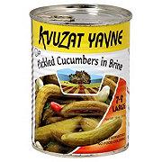 Kvuzat Yavne Pickled Cucumbers IN Brine