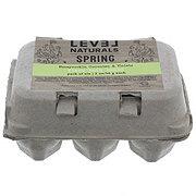 Level Naturals Texas Scents Spring Bath Bombs