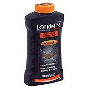 Lotrimin AF Anti-Fungal Powder