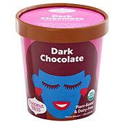 Luna & Larry's Coconut Bliss Dark Chocolate Frozen Yogurt