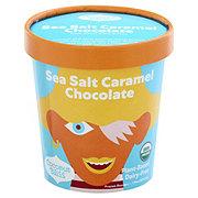 Luna & Larry's Organic Coconut Bliss Salted Caramel & Chocolate Frozen Dessert
