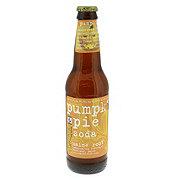 Maine Root Pumpkin Pie Soda Single