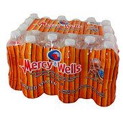 Mercy Wells Purified Water 24PK