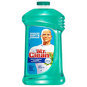 Mr. Clean Meadows and Rain Multi-Surface Liquid Cleaner