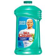 Mr. Clean Meadows & Rain Multi-Surface Liquid Cleaner