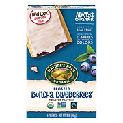 Nature's Path Organic Frosted Blueberry Toaster Pastries