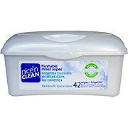 Nice 'N Clean Ecoflush Flushable Moist Wipes Tub