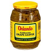 Orlando California Grape Leaves
