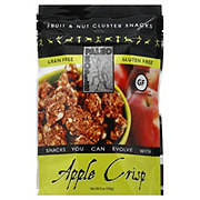 Paleo People Apple Crisp Snacks