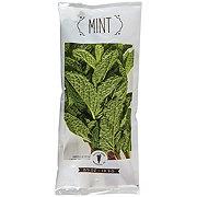 Patty's Herbs Mint
