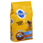 Pedigree Puppy Growth & Protection Chicken & Vegetable Dry Puppy Food